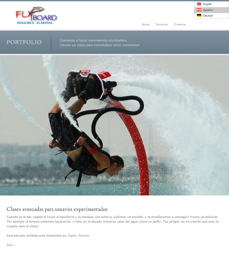 Diseño web Marbella. Fly board