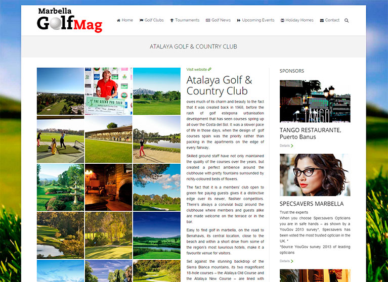 Revista online, Página de artículos